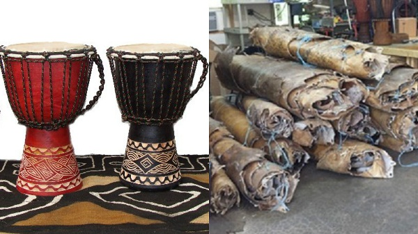 Drums made up of Cow's skin