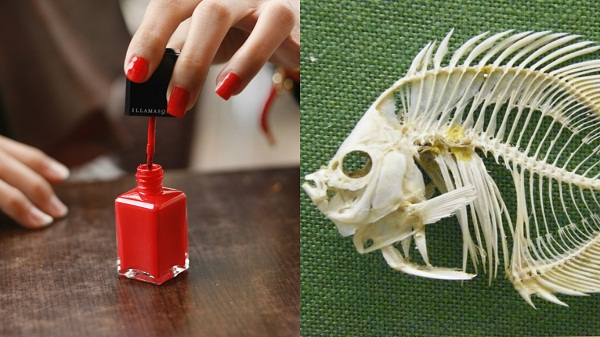Nail Polish contains Fish Bones