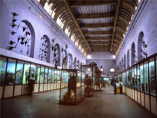 The National Library, Kolkata