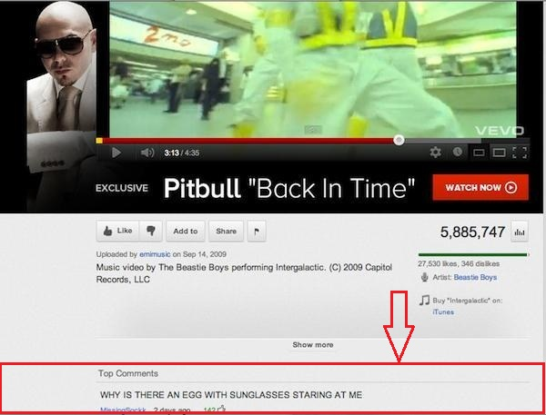 pitbull youtube