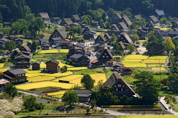 Shirawaka go Japan